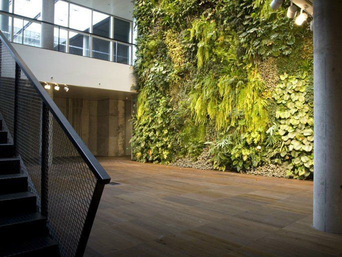 Giardini verticali e quadri vegetali sundar italia - Giardini verticali interni ...