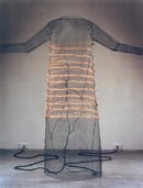 Jana Sterbak,  I want you to feel the way I do... (The Dress), 1984-85