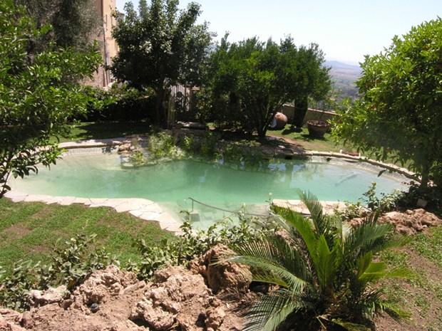 Il biolago di luciani giardini molto di pi di una piscina - Specchio parabolico stradale normativa ...