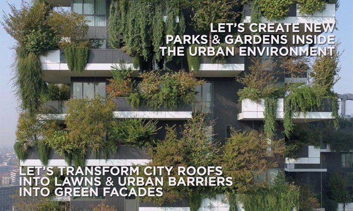 Urban Forestry, la soluzione per migliorare la qualità della vita in città