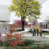 Scuole Innovative, Ordine degli Architetti di Milano: 'il concorso va avanti'