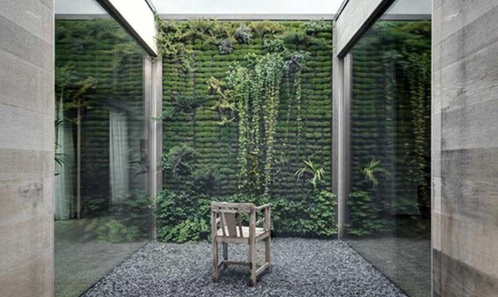 Pareti Dacqua Da Interni : Come rendere green coperture e pareti esterne