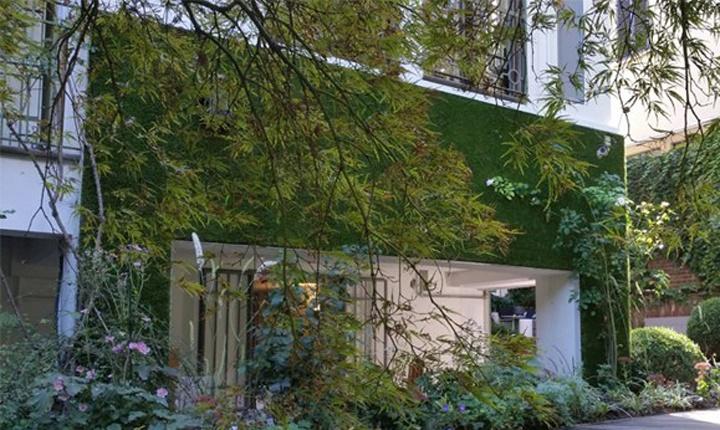 Come rendere green coperture e pareti esterne - Griglie per finestre esterne ...