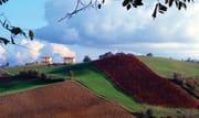 Consumo di suolo, Inu: 'rendere meno convenienti le nuove costruzioni'