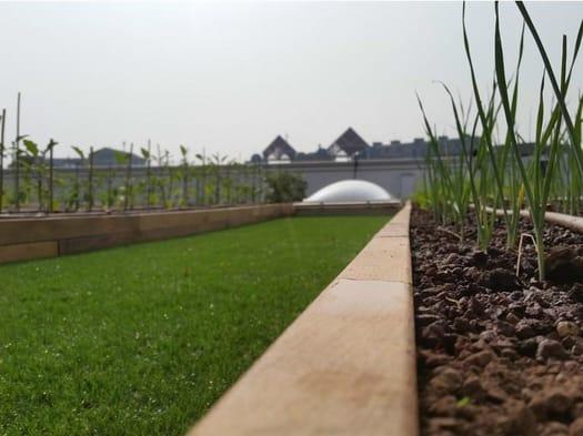 Recupero di un'architettura industriale: un tetto verde Roofingreen