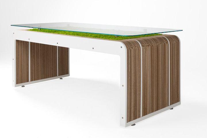 More Desk Plus con licheni vivi