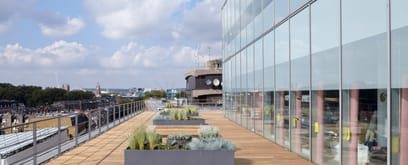 200 Gray's Inn Road new landscaped terrace features thermo-treated American ash