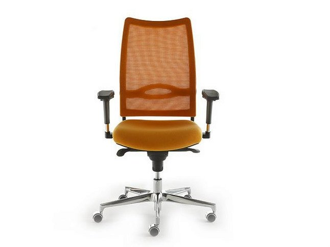 Height-adjustable mesh task chair with 5-Spoke base with armrests FLASH | Task chair - D.M.
