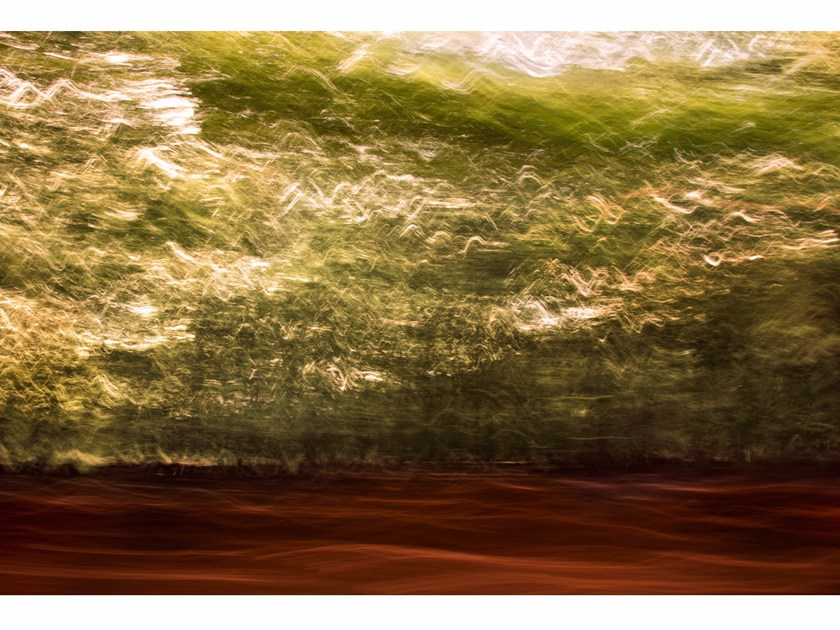 Photographic print GLADES IN BREVITY I - FINE ART by 99 Limited Editions