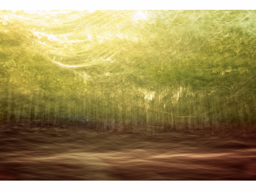 Photographic print GLADES IN BREVITY II - FINE ART by 99 Limited Editions