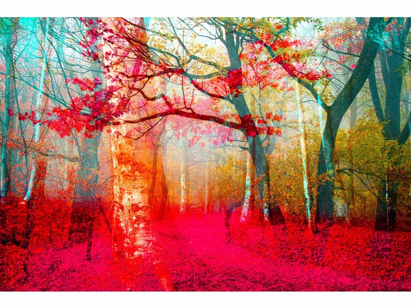 Photographic print PINK FOREST - FINE ART PHOTOGRAPHY by 99 Limited Editions