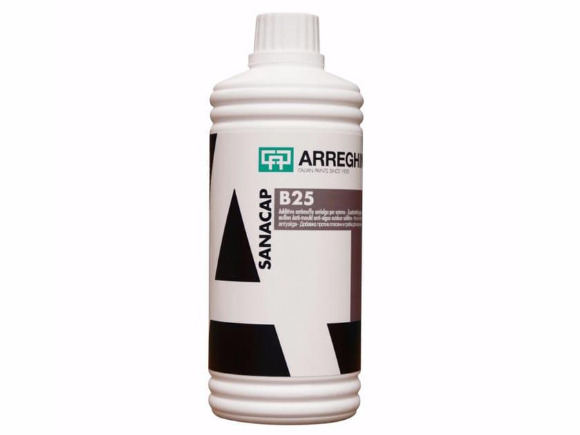 Mould remover B25 by CAP ARREGHINI