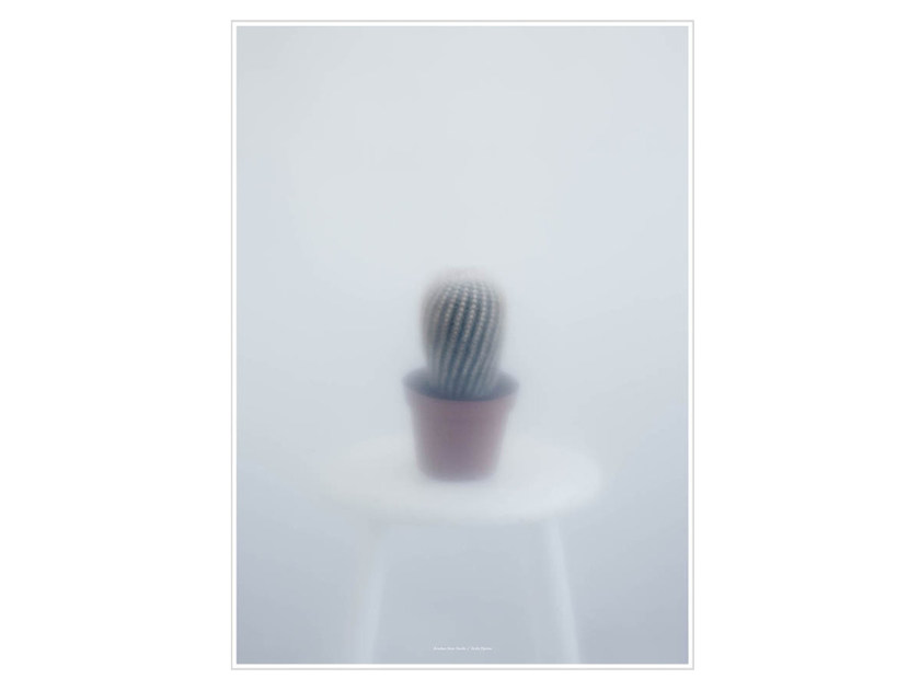 Stampa fotografica BALL CACTUS II - Kristina Dam Studio