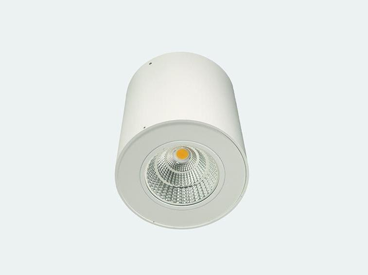 LED steel ceiling lamp CAMELEON MIDI | Ceiling lamp by ES-SYSTEM
