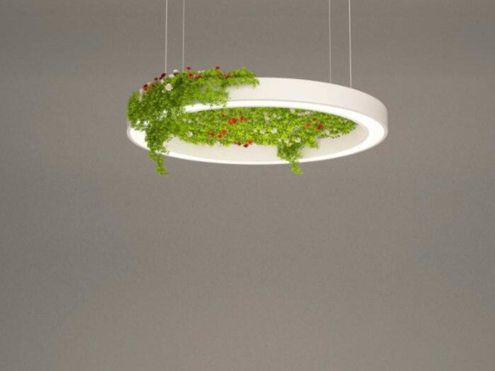 LED pendant lamp NGS AFG D | Pendant lamp by Neonny