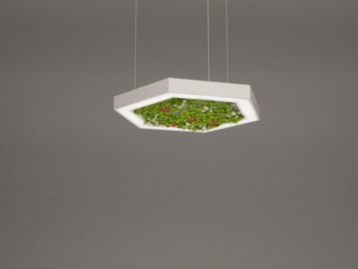 LED pendant lamp NGS AFG H | Pendant lamp - Neonny