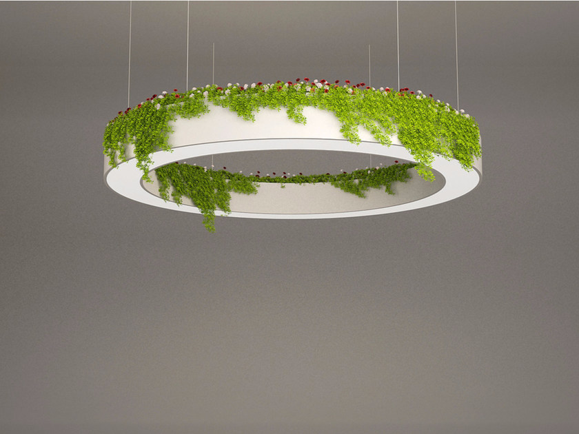 LED pendant lamp NGS AFH D | Pendant lamp by Neonny