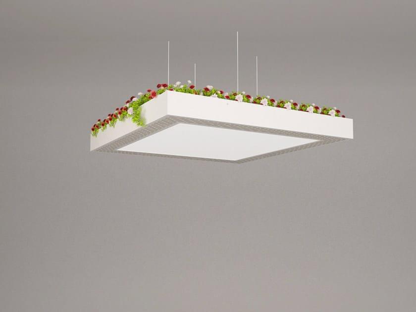 LED pendant lamp NGS LA S SB | Pendant lamp - Neonny