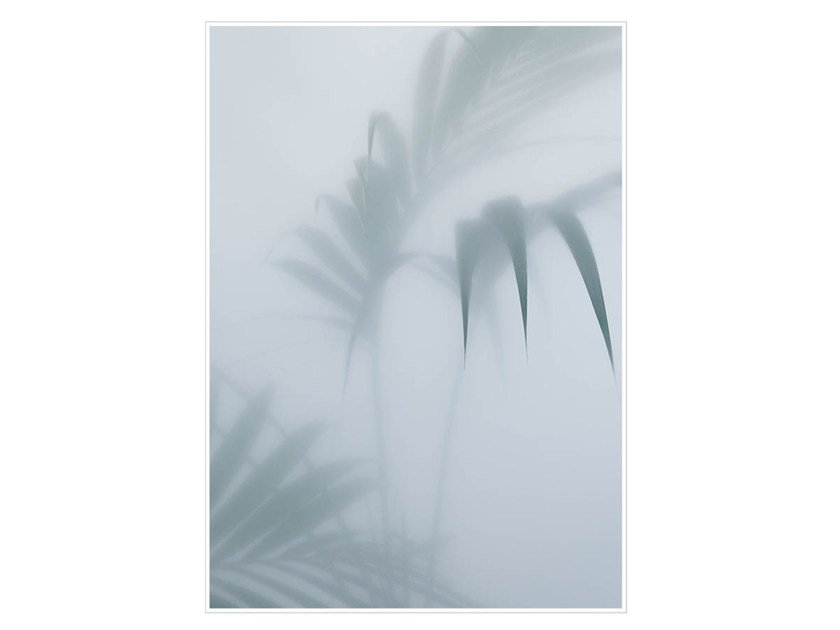Photographic print PALM I - Kristina Dam Studio