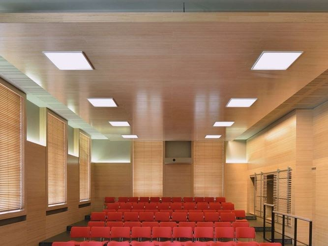 Plexwood - ceiling panels