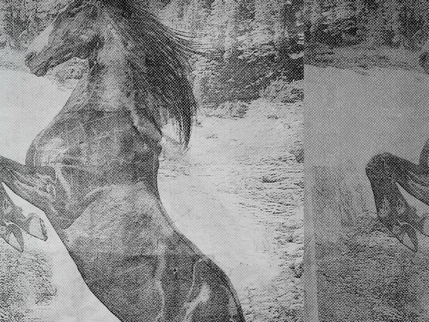 Wallpaper EL CABALLO DE ANDY - Wall&decò