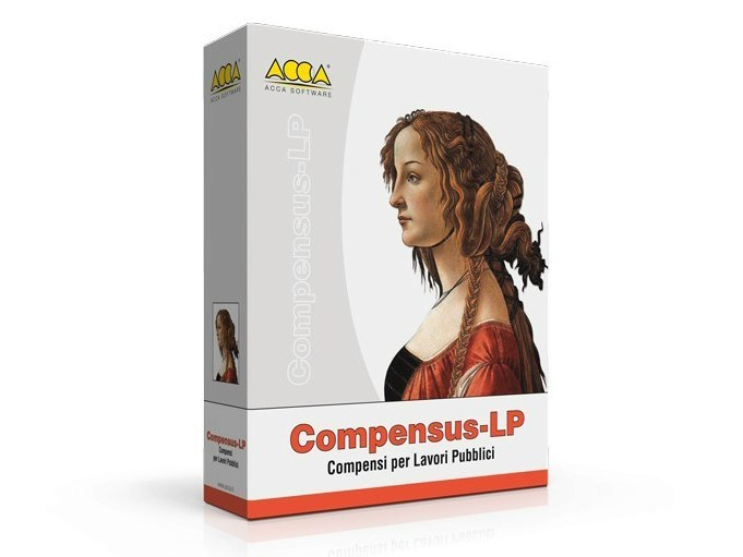 Professional fee Compensus-LP by ACCA software
