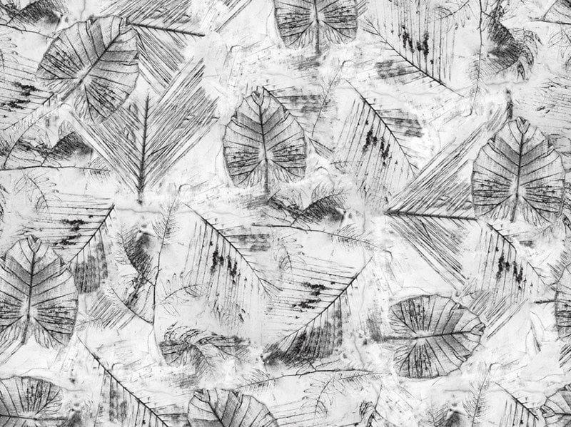 Motif TRACES by Wall&decò