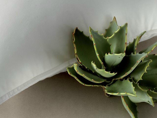 Rectangular polyester pillow ALOE - Demaflex