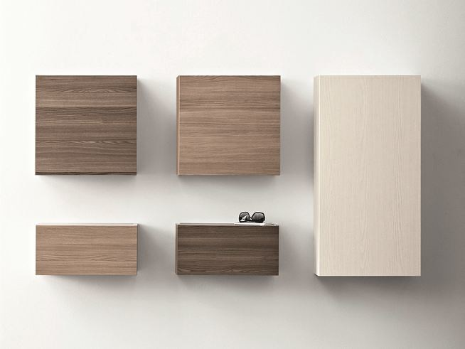 Elm wall cabinet with door CINQUANTA | Elm wall cabinet - Birex