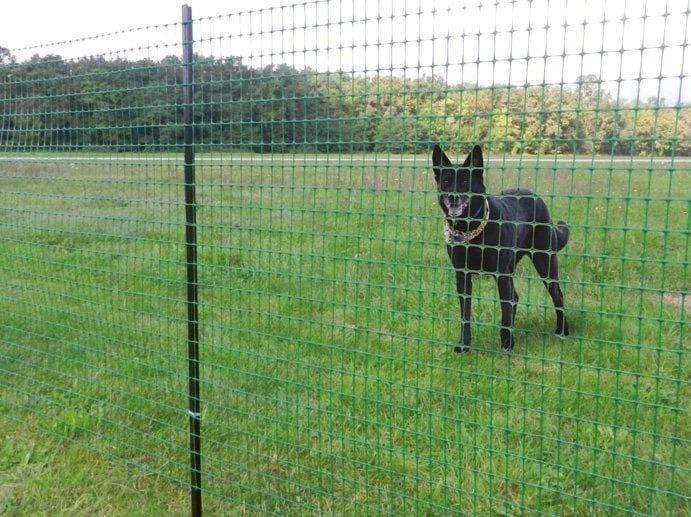 Fence RANCH - TENAX