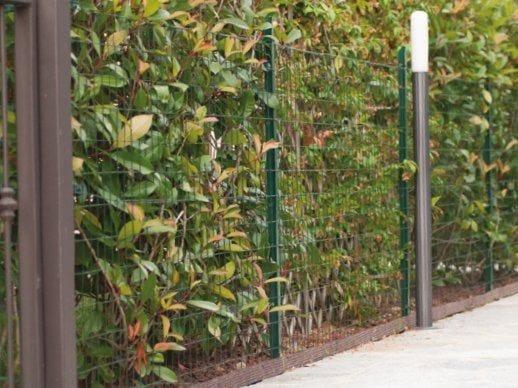 Plastic coated ornamental garden fence DELIMET - TENAX