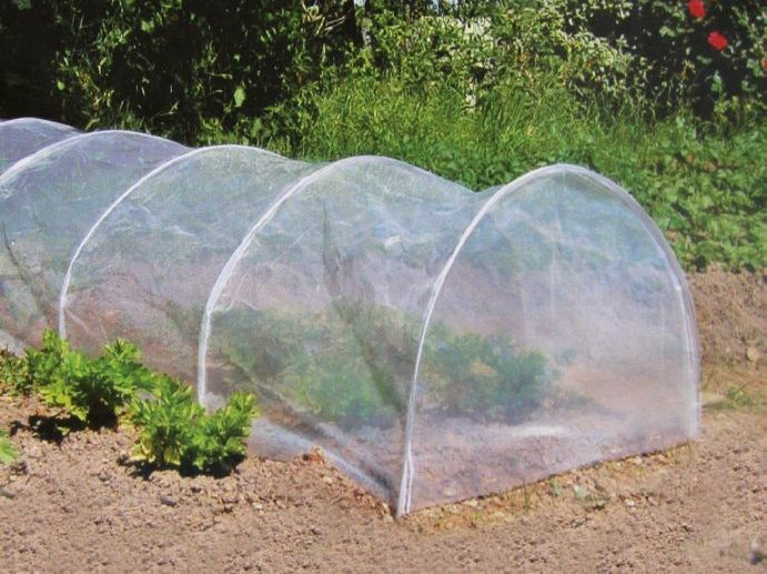 Garden and plant netting EARLY TUNNEL - TENAX
