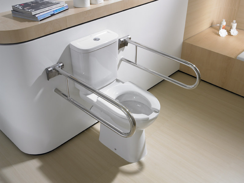 Access Toilet For Disabled By Roca Sanitario