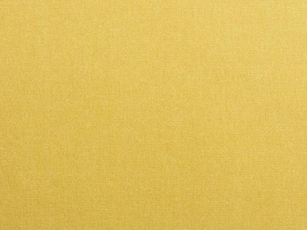 Solid-color velvet fabric ADAMO & EVA by Dedar