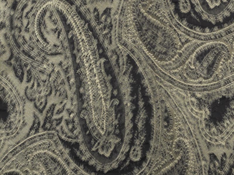 Paisley washable fabric for curtains ANISH by Dedar