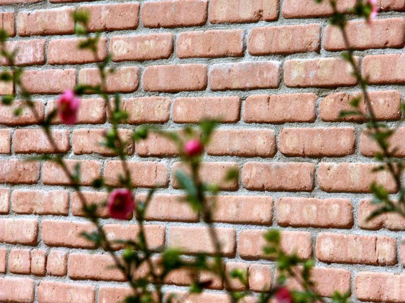 Facing brick ARCHEO - COTTO CUSIMANO