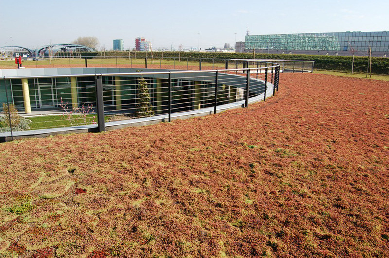 Sistema per tetto giardino drainroof geoplast for Soluzioni giardini pensili