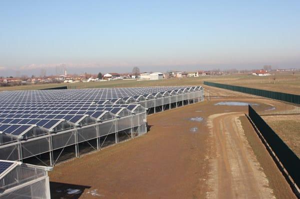 Serre fotovoltaiche bifalda e monofalda