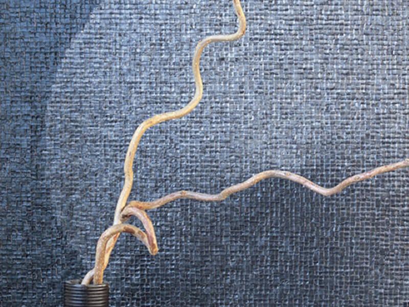 Relief vinyl ASIAN COOKIES - Élitis