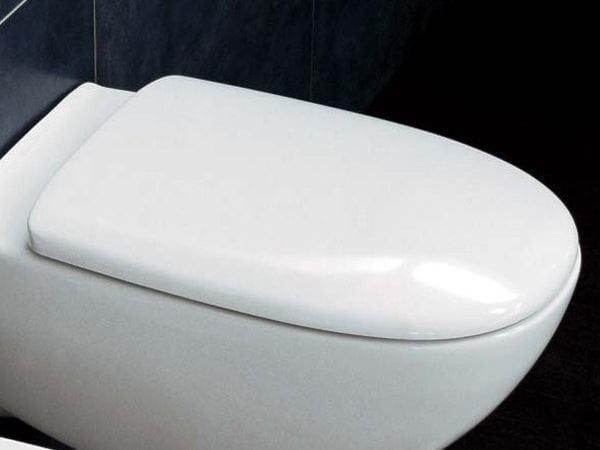 spin lunette de toilette by ceramica flaminia design. Black Bedroom Furniture Sets. Home Design Ideas