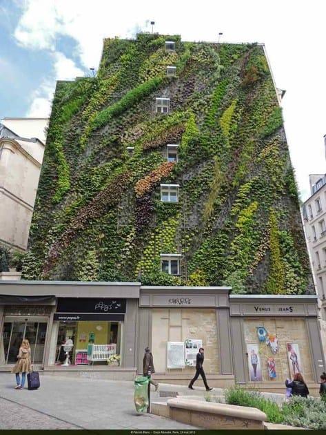 Riqualificare gli edifici con il verde urbano
