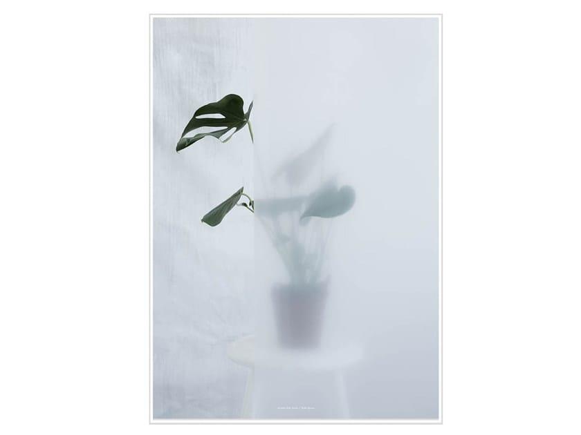 Stampa fotografica SPLIT-LEAF PHILODENDRON II - Kristina Dam Studio