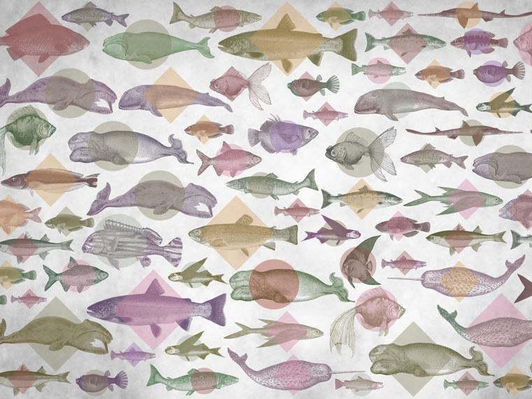 Motif wallpaper ACQUARIUM by Wallpepper