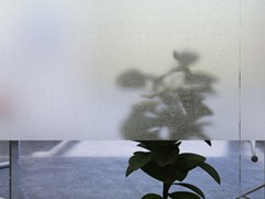 Pellicola per vetri adesiva decorativaG-05 FILIGRANA - ARTESIVE