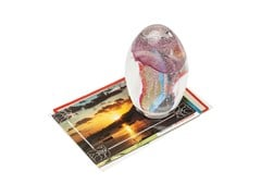 - Paperweight VISIBLE JELLYFISH MIRACLE - KARE-DESIGN