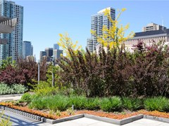 Sistema per tetto giardinoVIVO ROOF - TEGOLA CANADESE