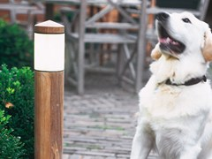 - Teak bollard light NORTHPOLE | Teak bollard light - ROYAL BOTANIA