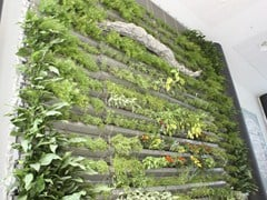 Support for vertical garden LIBERTY - TESSITURA TELE METALLICHE ROSSI OLIVIERO & C.
