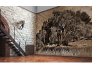 Wallpaper OLIVE TREE-SARDINIA - Wallpepper