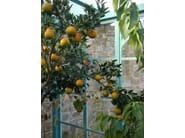 Conservatory Orangerie 8 - Garden House Lazzerini
